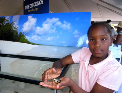 A young Turks Island miss holds a baby conch