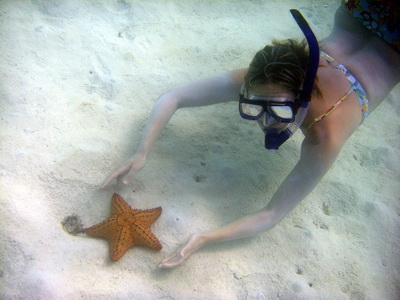 Tina gently lifts a cushion star to take a closer look