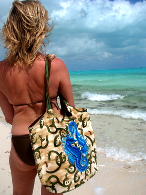 Just love the colours on the beach bag and the ocean at Long Bay