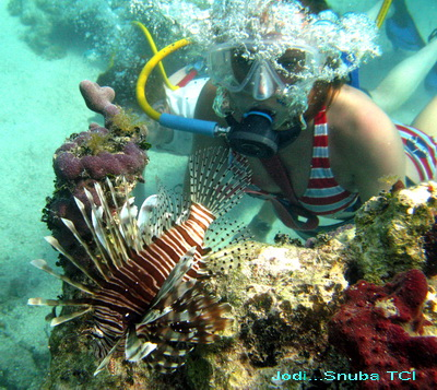 A snuba gal comes face to face with a Lionfish and Jodi from Snuba TCI snapped this great photo.