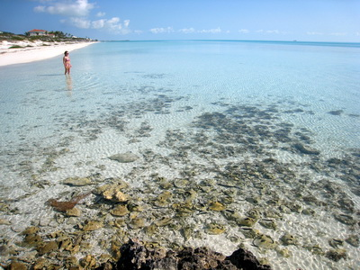 Long Bay is one of the areas that is loaded with old, discarded conch shells