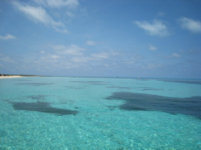 Stunning day and crystal clear water out at French Cay today