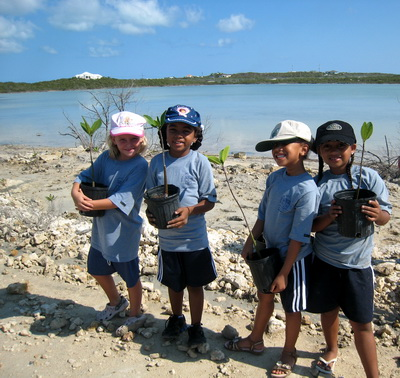 Every child planted a mangrove sapling along Flamingo Lake by Harbour Club Villas