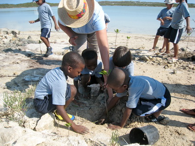 Students and teacher plant a mangrove beside the lake waters