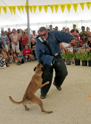 There was great excitement as everyone watched the K-9 demonstration taking down an intruder