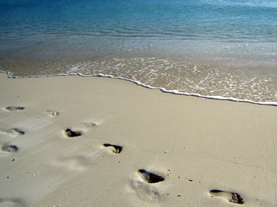 LEAVE ONLY FOOTPRINTS in the sand!