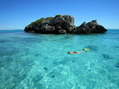 Snorkeling out at Turtle Rock this afternoon was fantastic........calm waters and oh so clear.