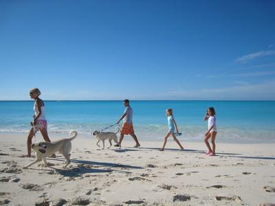 Another beautiful day, just perfect for a long, family walk along the beach dogs and all.