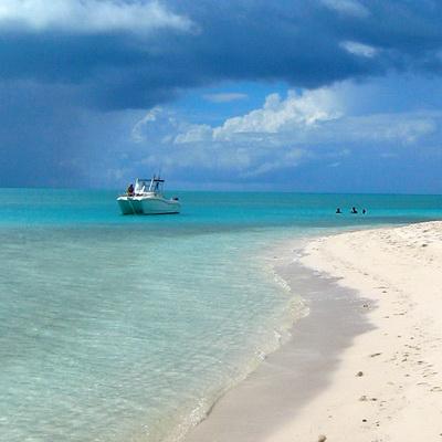 beachboneIMG_8827a