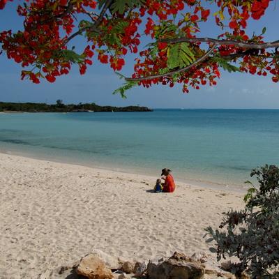 beachsapoIMG_1770